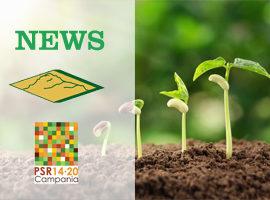 PSR COMUNICA - NEWSLETTER N. 16 DEL 05/06/2020